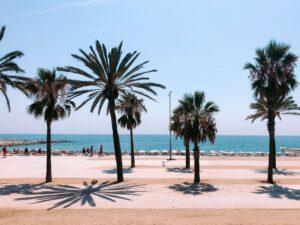 Qué hacer en verano en Barcelona by lucrezia-carnelos